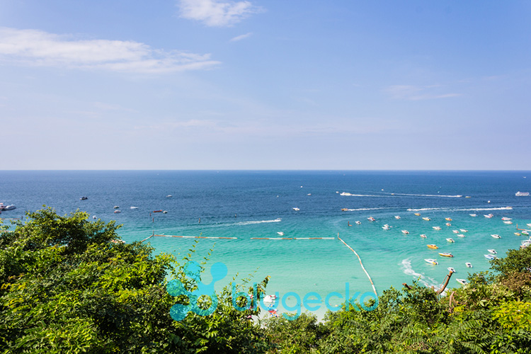 One Day Koh Larn Tour